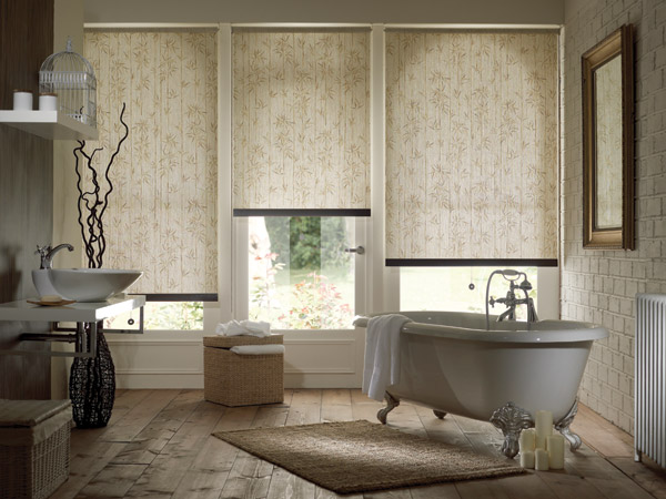 Roller Blinds Apollo Venetian Vertical Roman