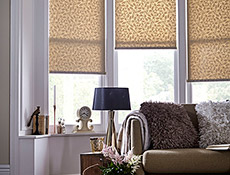Foliage Gold Sheen Roller Living Blinds
