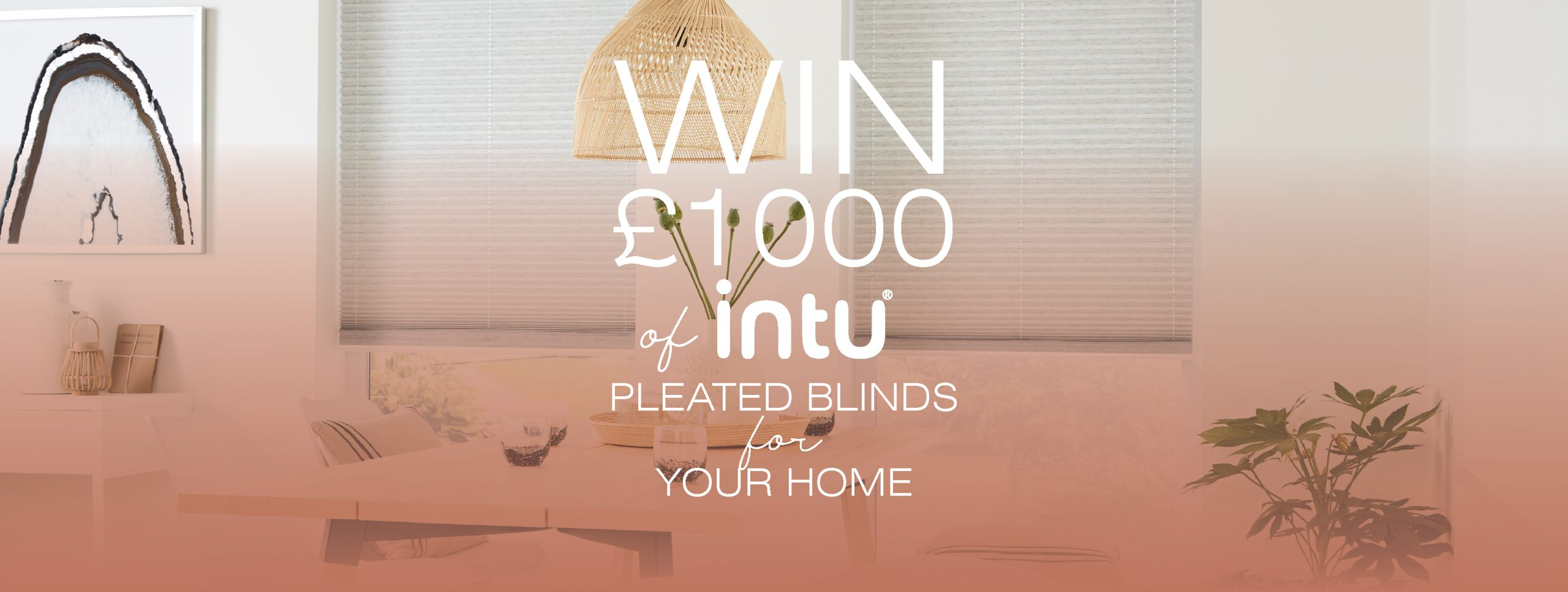 WIN! £1,000 worth of intu® pleated blinds